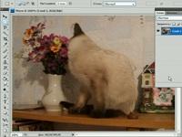 Обработка видео в Фотошопе